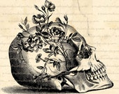 Human Skull and Roses, Flowers Digital Download for Iron on Transfer Papercrafts Pillows T-Shirts Tote Bags Burlap No 00437