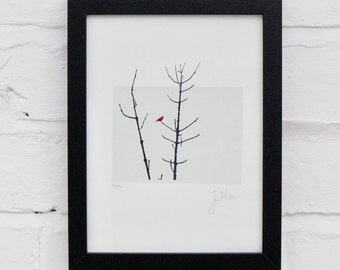 Bird in a tree - Signed Limited Edition Screenprint