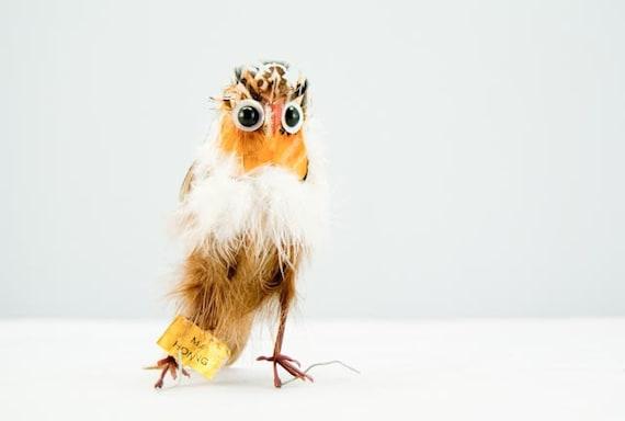 Super Adorable & Unique Vintage Feather Owl