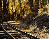 Just Around The Turn - Remote Railroad Tracks Located In Oregon Fine Art Nature Photography Print (8x12) by John Hamil Photography