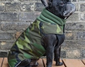 The Latch - Adult Boys French Bulldog/Pug Winter Dog Coat