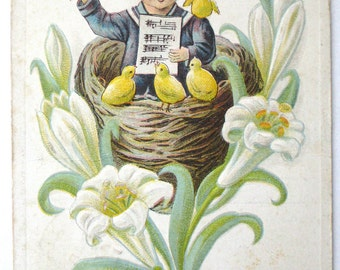 Old Postcard with George Washington Stamp Music Conductor Yellow Birds Easter Lily Birds Nest