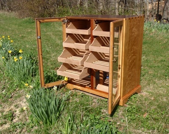 Cigar Humidor and Daffodils