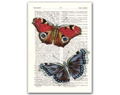 Amazing Butterflies, vintage illustration, Upcycled English Dictionary page. Buy 3 and get 1 FREE, Natural History, Educational board