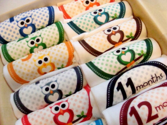 Set of 12 Month 2 Month Baby Milestone Beautiful Owl Collection, Perfect Baby Shower Gift, Comes with Gift Box, Paper Wrap and Gift Tag