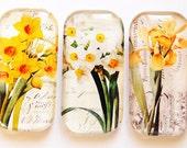 Flower Glass Magnets, Fridge Magnets, Flower Magnets, daffodil Magnets, Spring Flowers, etsy spring, spring 2012