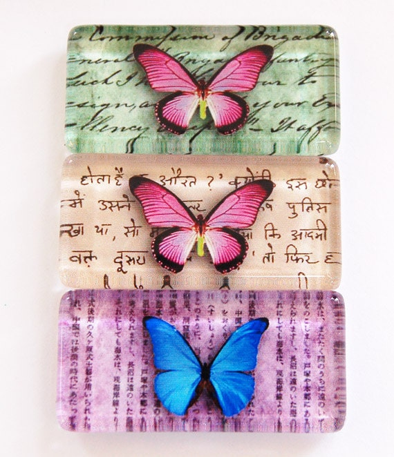 Butterfly Magnets, Fridge Magnets, Nature Magnet, Butterfly Magnets, Glass Magnets, butterflies