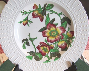 Cauldon England Luncheon Plate Botanical Series 1920 to 1930 MINT
