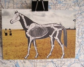 Quirky Original Art Collage Horse and Farmers