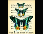 Vintage Sheet Music Natural History Butterfly print 15