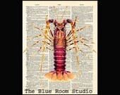 Vintage Dictionary page Natural History Lobster print 21