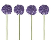 LAST ONE - SET of 4 Decoflower Allium Purple