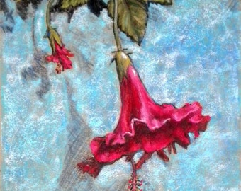 Original Framed Pastel Drawing / Painting 15 x 12 in. Red Flower Against Blue Wall