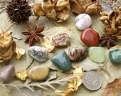 Mystery Pick // 10 Mixed Tumbled Stones //
