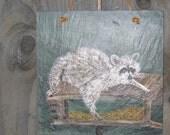 Raccoon Acrylic Painting