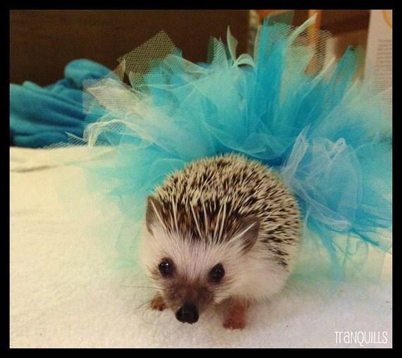 Blue Hedgehog Tutu