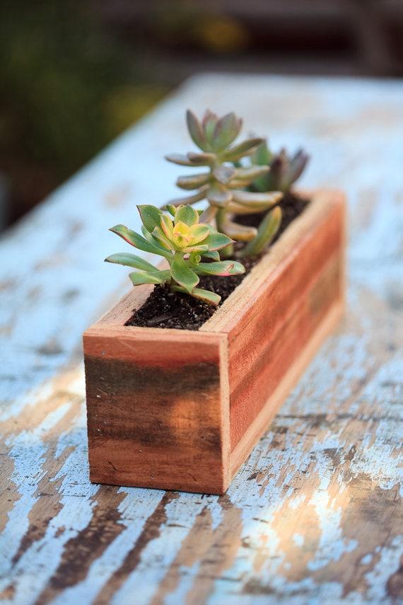 3x12 succulent planter box redwood great for - Rectangular succulent planter ...