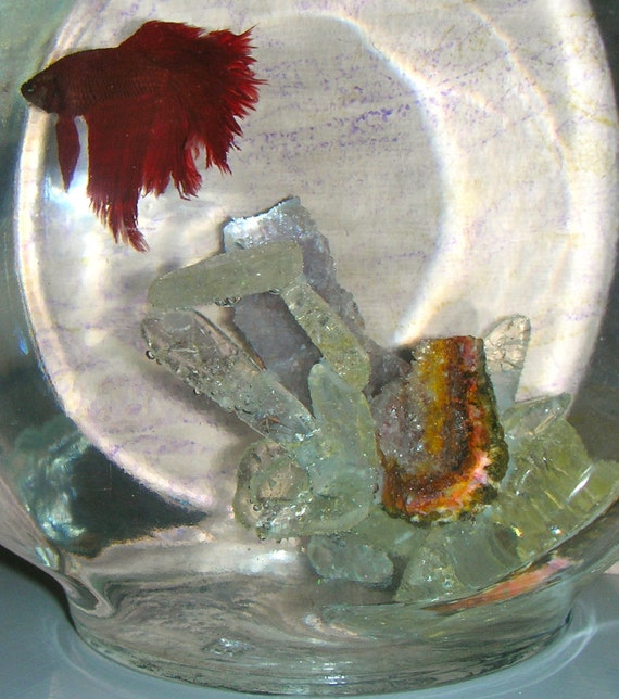 Chip ice flake quartz,amethyst gemstone crystal aquarium decoration, also for beta fish.  For fresh-water fish, 100% safe.