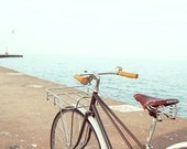 3-Speed Daisy - Mixtie Handcrafted Bicycle Locally Fabricated in Chicago