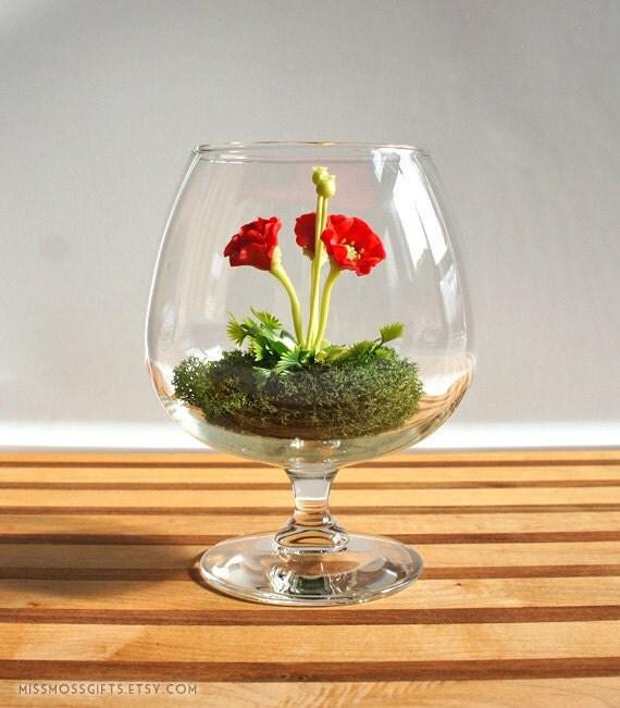 Tiny Red Poppy Woodland Terrarium in Brandy Glass