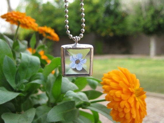 Beveled Glass Pendant with a Real Forget Me Not Flower