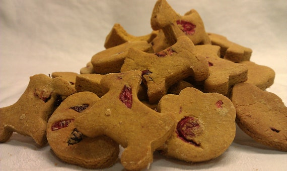 Pumpkin with Cranberry dog treats - Oven Baked Dog Cookies and Treats
