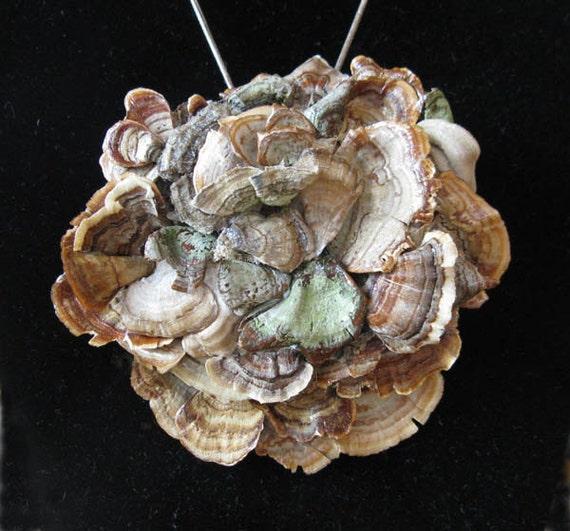 """Mushroom Brooch, Woodland Foraged, Eco Friendly """"Rosette"""""""