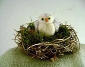 Eco-Handmade Felted Owl and Nest