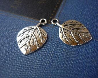 20 pcs Antique Silver Leaf Charms 22mm (SC504)