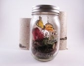 Mason Jar Centerpiece-Butterfly Wedding-Butterfly Landscape in Mason jar with a Birch Bark Red Rose-Botanical popurri