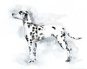 Custom Dalmatian Art - Watercolor Silhouette 8x10