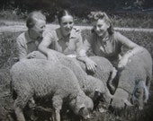 Vintage Photo - three women with sheep