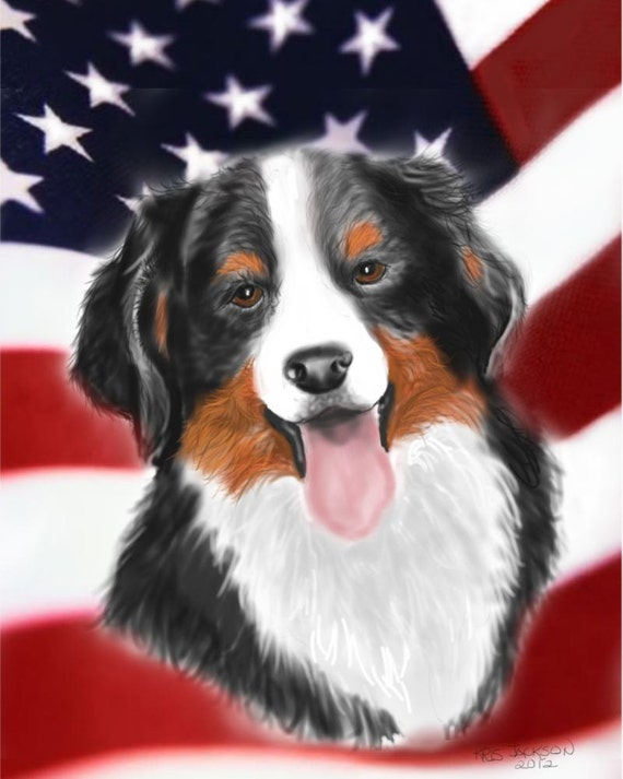 Bernese Mountain Dog Patriotic note cards