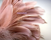 Mauve Pink Champagne Nagoire Goose Feathers 4 to 6 inches long (10 to 15 cm) -1 Inch Strip