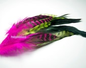Feather MIXED SAMPLE Pink Green Iridescent Chinchilla & Rooster Feathers (mix15)