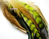 Feather MIXED SAMPLE Pink Green Iridescent Chinchilla & Rooster Feathers (mix13)