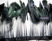 Black Iridescent Dyed Stripped Coque Rooster Feathers 4 to 6 inches long -2 Inch Strip