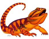 "Oaxacan Bearded Dragon original colored pencil painting 11"" x 17"" prints"