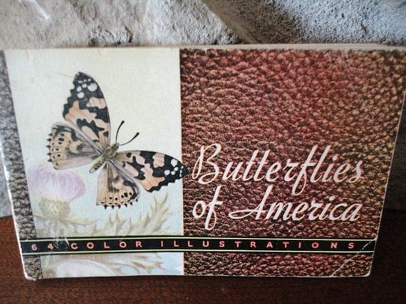 Butterflies of America, Butterflies and Moths of America, Lillian Davids Fazzini, 1934 Whitman Publishing Company, Vintage Ephemera