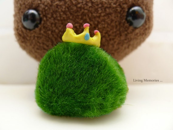 marimo kingdom gracious Queen - the living green moss ball