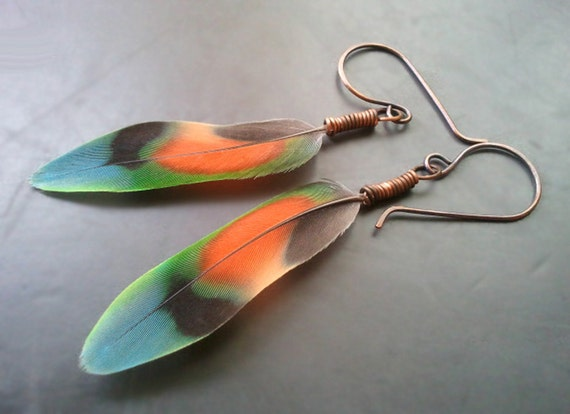 Antique Copper Wire Wrapped Peach Faced Lovebird Feather Earrings