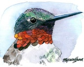ACEO Limited Edition 8/10- Profile of Hummingbird, Art print of an original ACEO painting by Anna Lee, Home deco idea, Gift for bird lover
