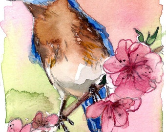 ACEO Limited Edition 4/10- Bluebird and Cherry Blossom