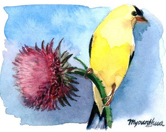 ACEO Limited Editon 4/10-Goldfinch on a Thistle, in watercolor