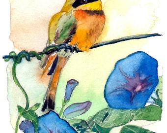 ACEO Limited Edition 6/10- Bee eater in morning glories, Art print of an original watercolor painting,Bird art, Small housewarming gift idea