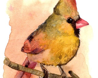 ACEO Limited Edition 1/25- Baby cardinal