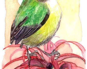 ACEO Limited Edition - Lighten up Little Bird