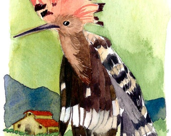 ACEO Limited Edition 2/10- The Hoopoe, in watercolor