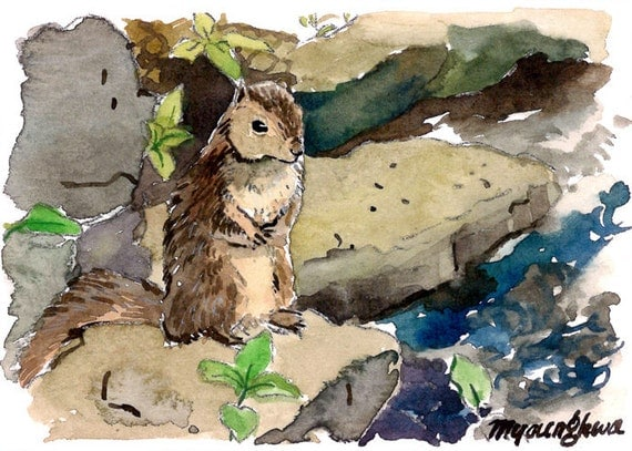 ACEO Limited Edition- ~Squirrel Contemplation~ in watercolor
