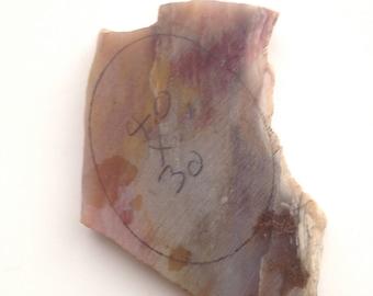 Petrified Wood Cab Rough VIntage Gem Cutting Material